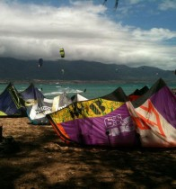 Kite-Beach-Maui-Kites-Color